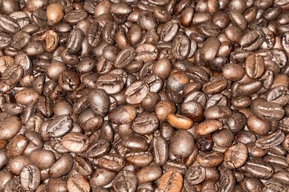 Robusta Red Honey